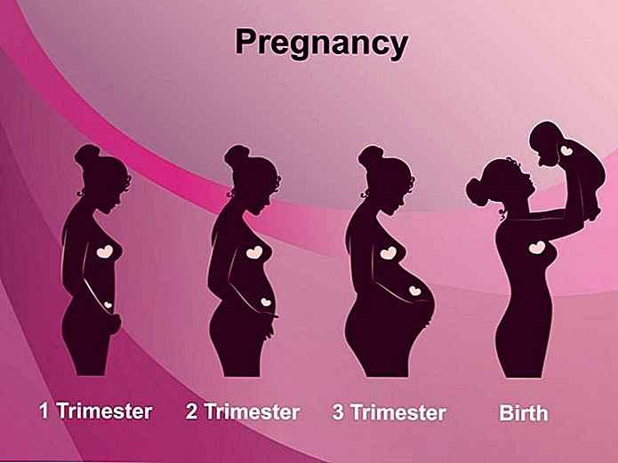 Diferentes etapas del parto
